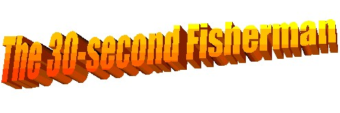 Learn to Fish in 30 Seconds!